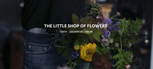 thelittleshopofflowers